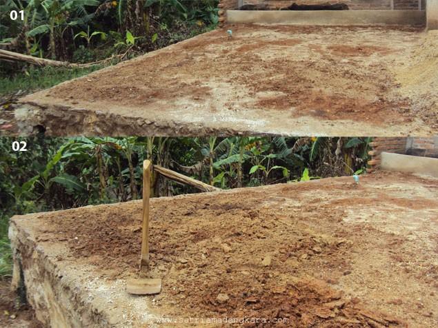 Cara Mengolah Tanah untuk Menanam Rumput Gajah