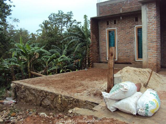 Harga Bibit Rumput Gajah Per Meter Persegi