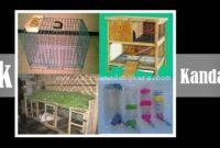 Pemilihan Lokasi Kandang Kelinci